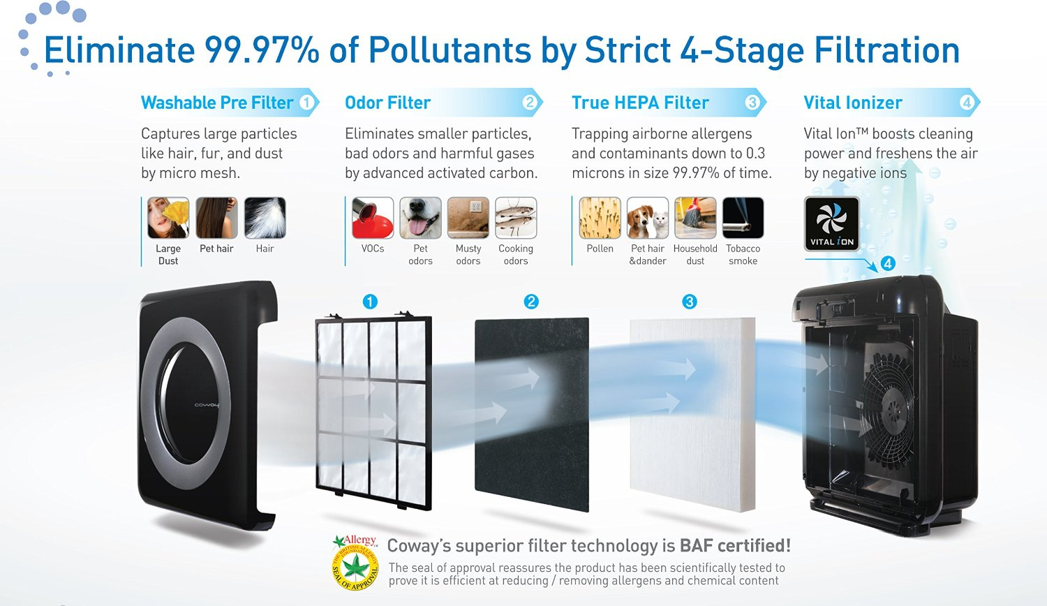 Best Air Purifiers for Mold Spores and Mildew - #3 Coway AP-1512HH Mighty Air Purifier - 4 Stage Filtration Process Infographic