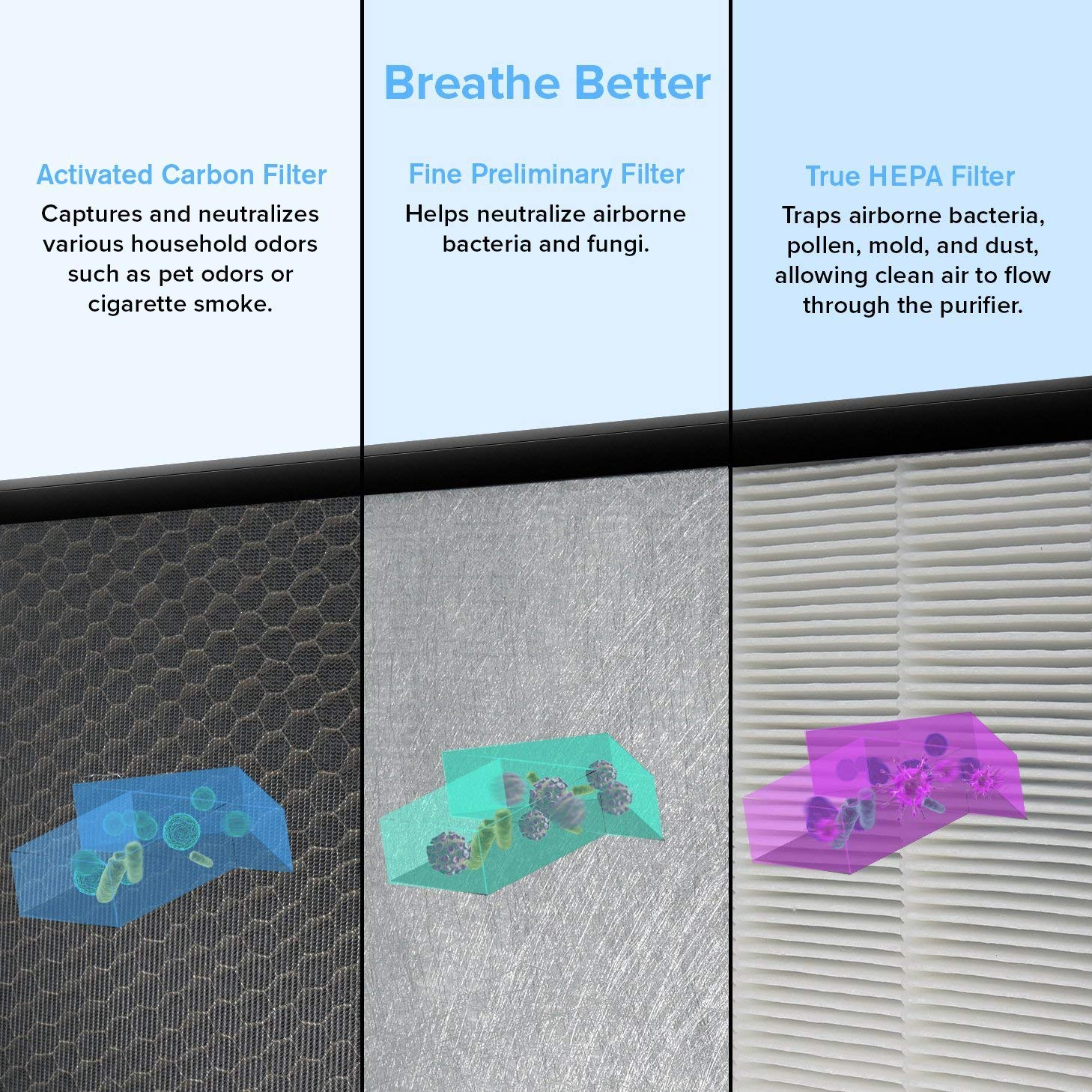 Best Air Purifier for Odor Elimination - Features Our Air Purifier Needs to Eliminate Odors