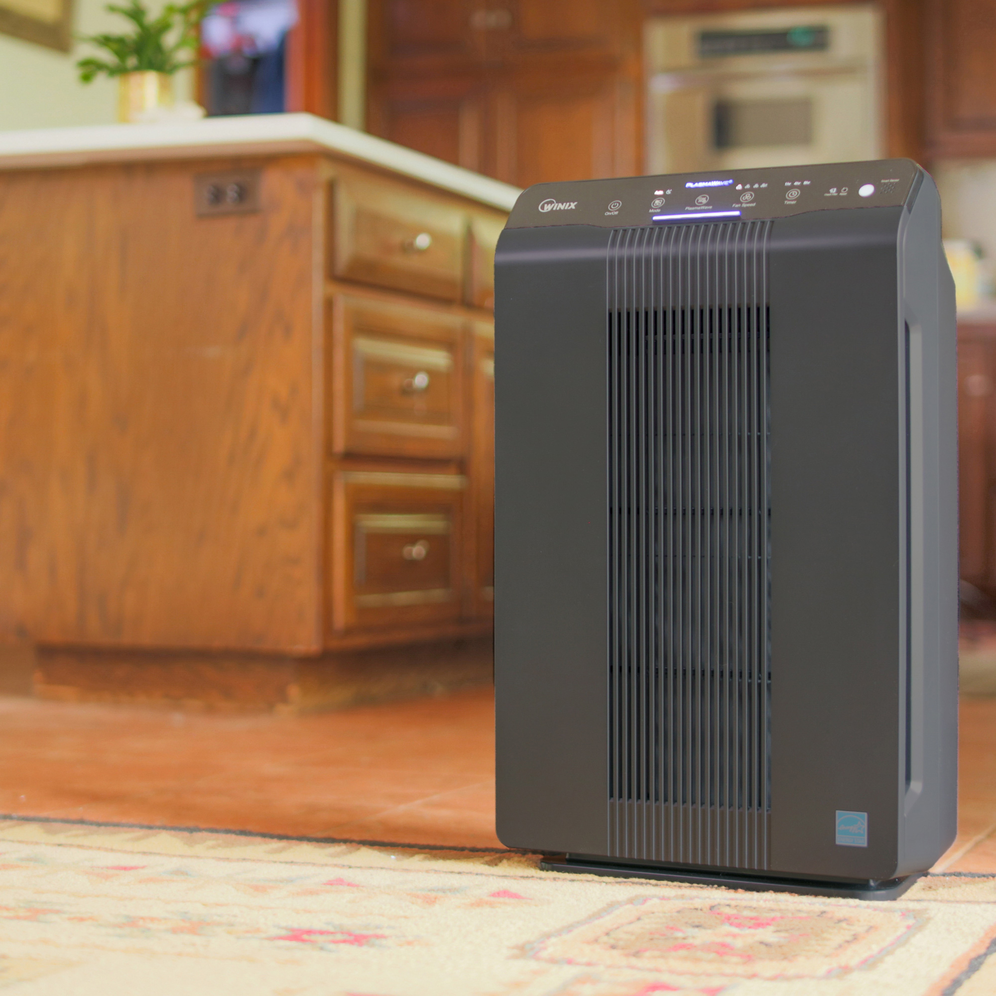 Best Air Purifier for Odor - Winix in Kitchen