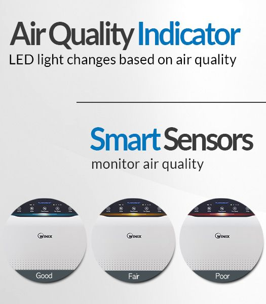 Winix C535 Air Quality Indicators - These air quality indicators help let you know how the air quality is around your house!